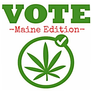 the debate over the controversial issue of legalization of cannabis sativa Cannabis sativa student name  legalization of cannabis has become an extremely controversial issue  supporters of the legalization of cannabis.