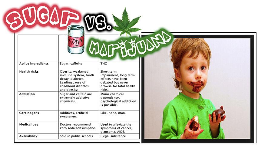 Sugar Vs Marijuana