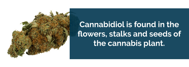 Cannabidiol is found in the flowers, stalks and seed of the cannabis plant