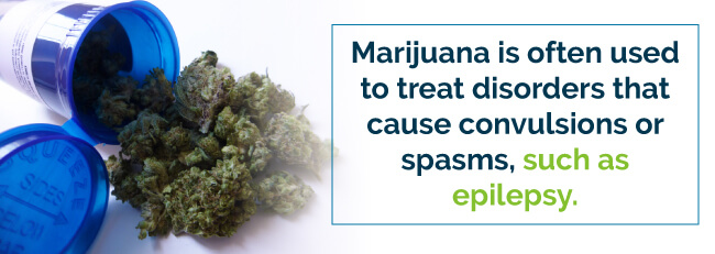 Marijuana is often used to treat disorders that cause convulsions or spasms, such as epilepsy.