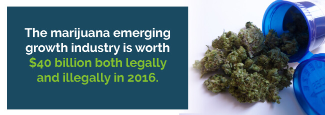 The marijuana emerging growth industry is worth $40 billion both legally and illegally in 2016