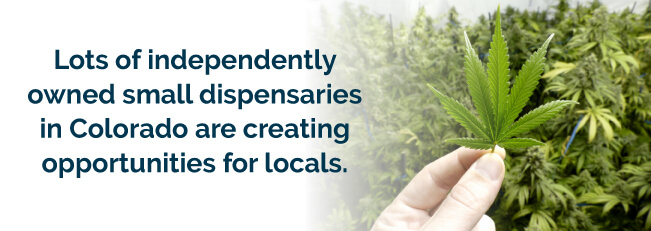 Lots of independently owned small dispensaries in Colorado are creating opportunities for locals