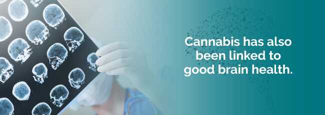 Cannabis has also been linked to good brain health
