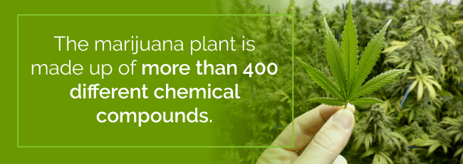 marijuana chemical compounds