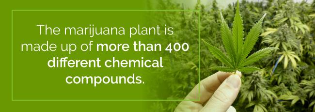 marijuana chemical compounds