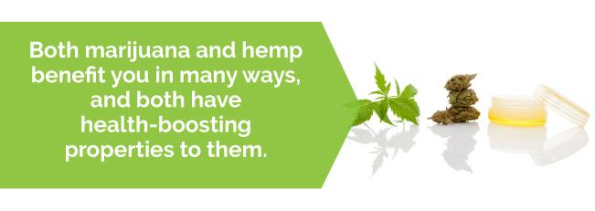 marijuana hemp benefits