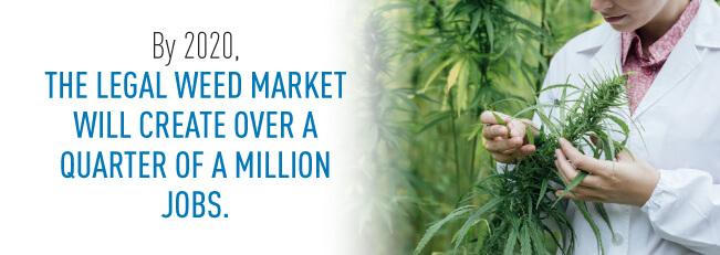 weed job growth