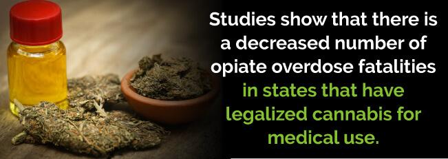marijuana lower fatalities