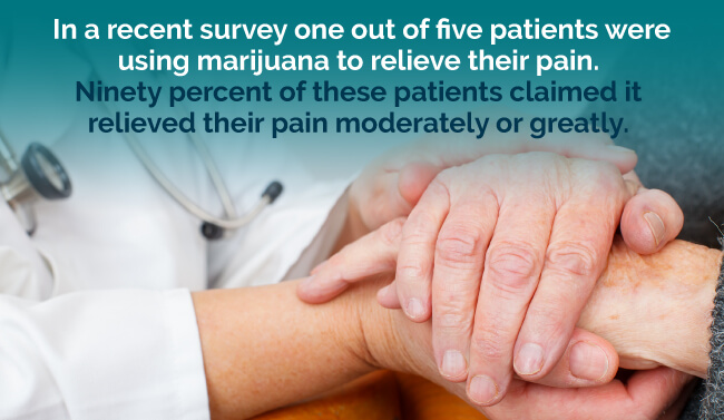 In a recent survey, one out of five patients were using marijuana to relieve their pain