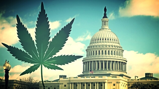 Cannabis Industry Gaining Unanticipated Conservative Allies