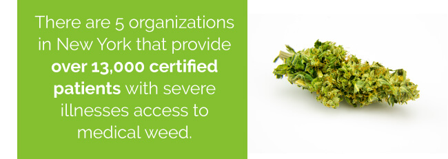 There are 5 organizations in New York that provide over 13,000 certified patients with severe illnesses access to medical weed