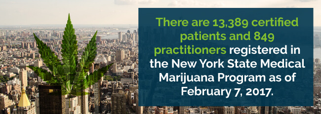 There are 13,389 certified patients and 849 practitioners registered in the New York State Medical Marijuana Program as of February 7, 2017