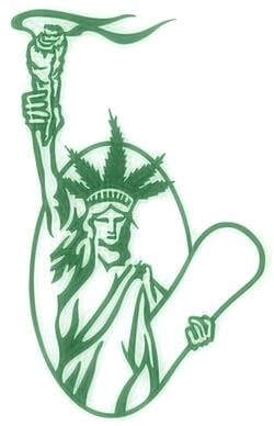 Medical Marijuana Emerging As New York