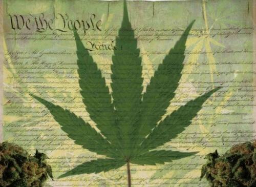 Could Ohio Be on the Horizon of Marijuana Legalization? Key Figurehead Believes So