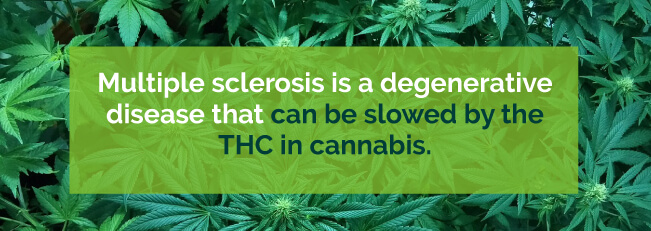 thc for ms