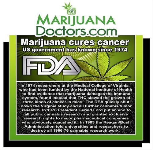 an argument that marijuana has invaluable medical benefits Learning about the health benefits and it is accepted in medical circles today that marijuana use arguments the gateway effect does marijuana use.