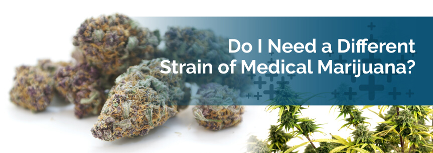 Do I Need a Different Strain of Medical Marijuana