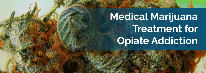 Medical Marijuana Treatment for Opiate Addiction