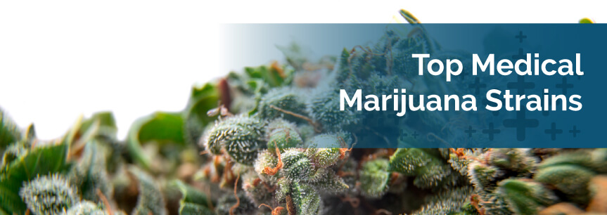 Top Medical Marijuana Strains