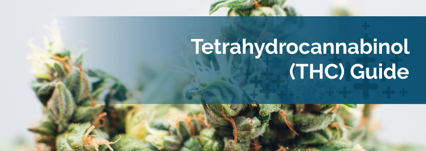 Tetrahydrocannabinol (THC) Guide