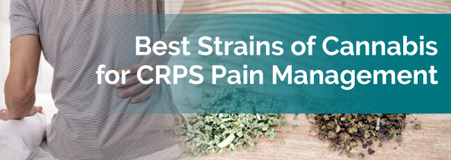 Best Strains of Cannabis for CRPS Pain Management