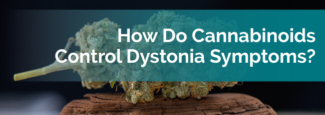 How Do Cannabinoids Control Dystonia Symptoms