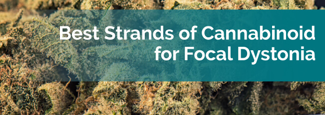 Best Strands of Cannabinoid for Focal Dystonia