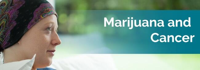 marijuana for cancer