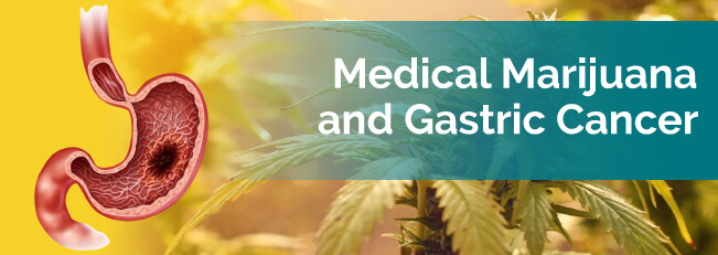 marijuana and gastric cancer