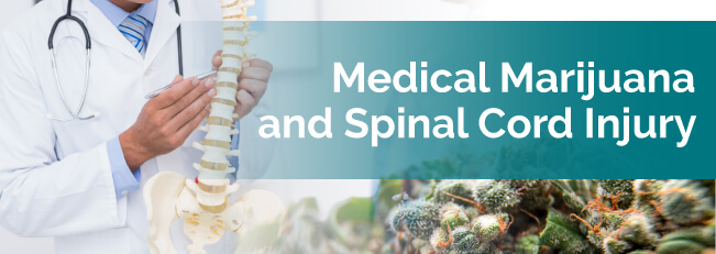 Medical Marijuana For Spinal Cord Injury