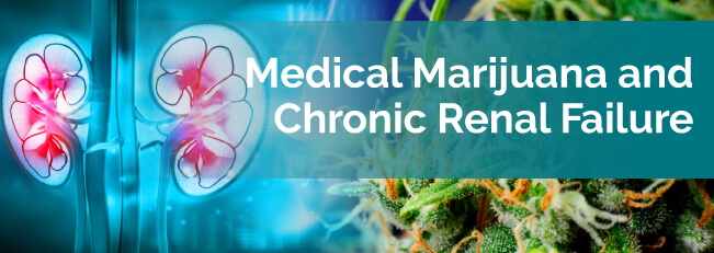 Medical Marijuana For Chronic Renal Failure