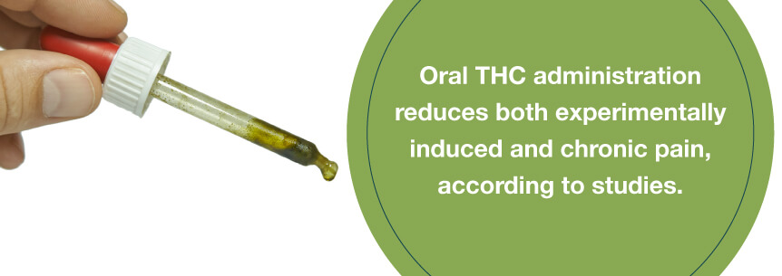 oral cbd oil