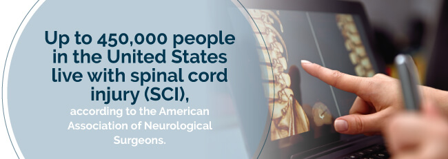 spinal cord injury rate