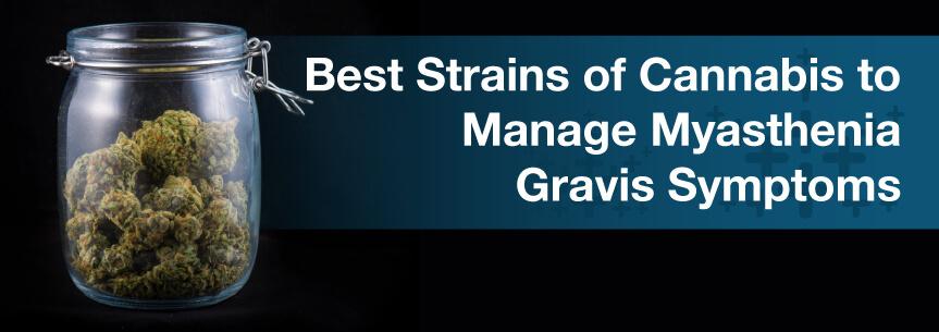 Best Strains of Cannabis to Manage Myasthenia Gravis Symptoms