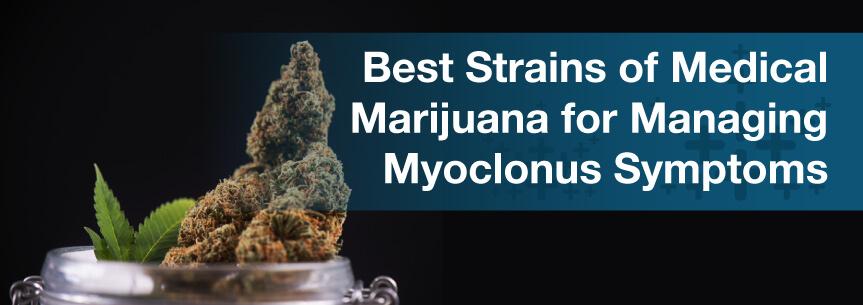 Best Strains of Medical Marijuana for Managing Myoclonus Symptoms
