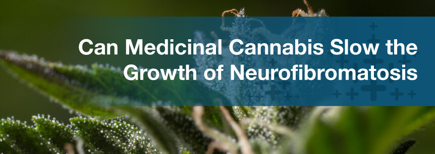 Can Medicinal Cannabis Slow the Growth of Neurofibromatosis Tumors?