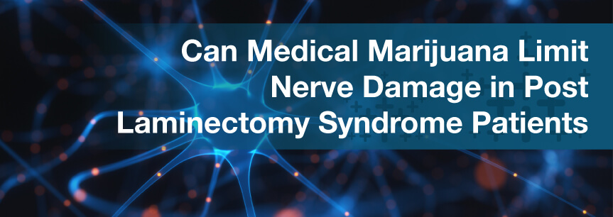 Can Medical Marijuana Limit Nerve Damage in Post Laminectomy Syndrome Patients