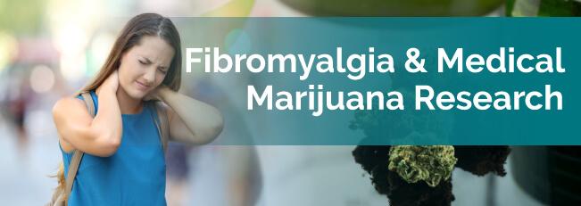 fibromyalgia research