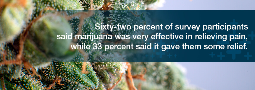 marijuana effective at relieving pain