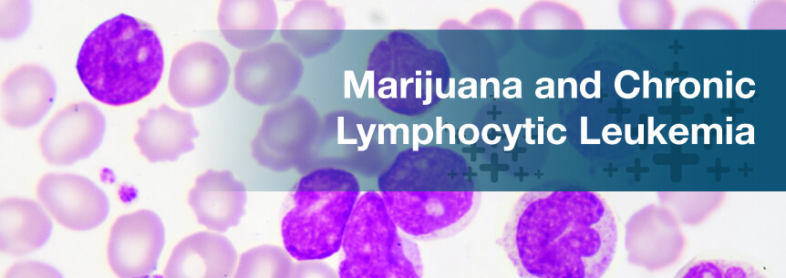 marijuana chronic lymphocytic leukemia