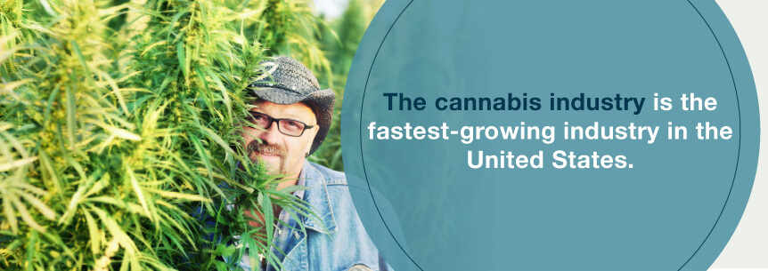 marijuana industry growth