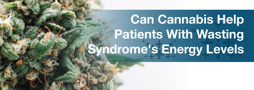 Can Cannabis Help Patients With Wasting Syndrome's Energy Levels?