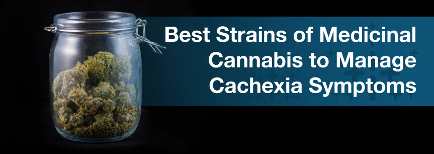 Best Strains of Medicinal Cannabis to Manage Cachexia Symptoms
