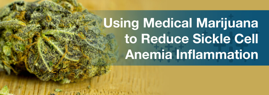 Using Medical Marijuana to Reduce Sickle Cell Anemia Inflammation