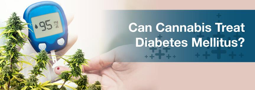 Can Cannabis Treat Diabetes Mellitus?