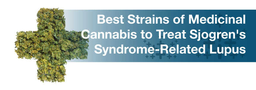 Best Strains of Medicinal Cannabis to Treat Sjogren's Syndrome-Related Lupus