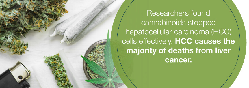 hcc marijuana help