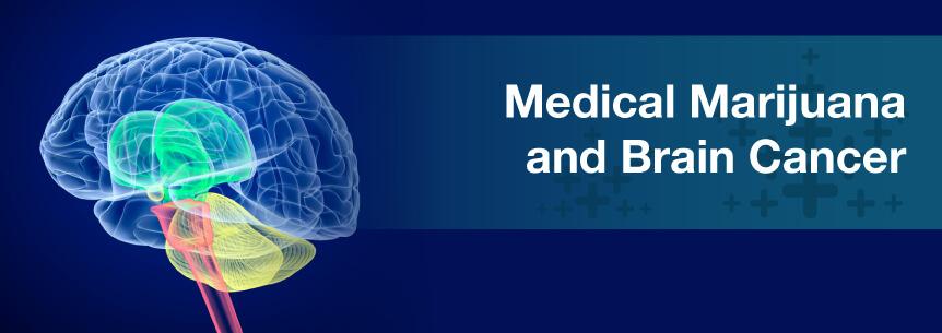 marijuana and brain cancer