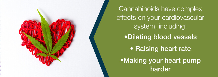 cannabinoids and the heart