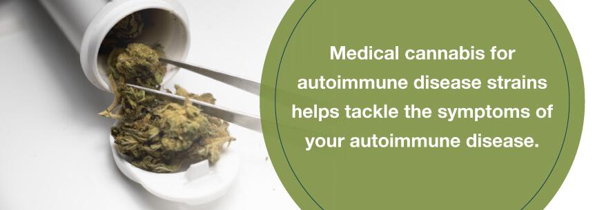marijuana autoimmune help